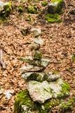 Steine im Gleichgewicht, Stapel von Felsen im Wald im Herbst lizenzfreie stockfotos