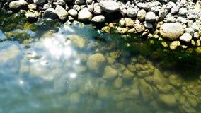 Steine im Hafenbecken Stockbild