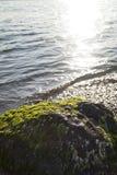Steine im Wasser Lizenzfreie Stockfotografie