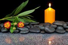 Steine mit Tropfen und Blume auf schwarzem Hintergrund Stockfotografie