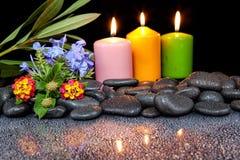 Steine mit Tropfen und Blume auf schwarzem Hintergrund Stockfoto