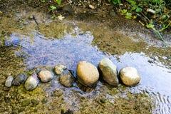 Steine richteten im kleinen Nebenfluss mit seichtem Wasser aus Stockbilder