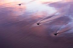 Steine im Sand Stockfoto