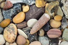 Steine und Blitz gefunden am Strand Stockfotografie