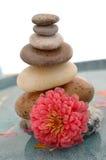 Steine und Blume Stockfoto