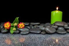Steine und Blume auf schwarzem Hintergrund mit Reflexion Stockfotografie