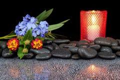 Steine und Blume auf schwarzem Hintergrund mit Reflexion Stockbilder