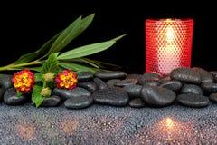Steine und Blume auf schwarzem Hintergrund mit Reflexion Lizenzfreie Stockfotografie