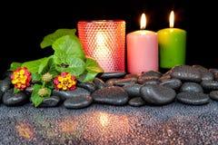 Steine und Blume auf schwarzem Hintergrund mit Reflexion Stockfotos