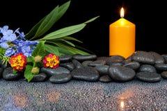 Steine und Blume auf schwarzem Hintergrund mit Reflexion Lizenzfreies Stockbild