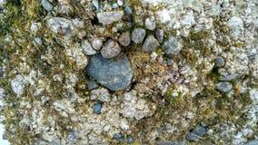 Steine und Eis Lizenzfreies Stockbild