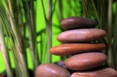 Steine und kleiner Bambusbaum Stockfoto