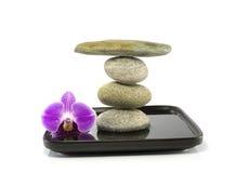 Steine und Orchidee im Schwerpunkt Stockfoto