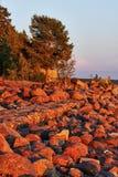 Steine und Wald in den Strahlen der roten Sonne bei Sonnenuntergang Stockbild