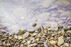 Steine und Wasseroberfläche Stockfotografie