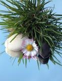 Steine und weiße Blume im Gras Stockfotos