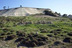 Steine und weißer Berg Stockbild