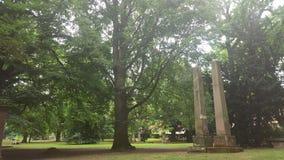 Steine unter Bäumen Lizenzfreies Stockfoto