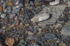 Steine unter Wasser Stockbild