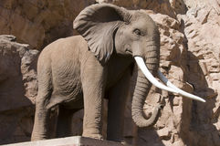 Steinelefant Stockfotos