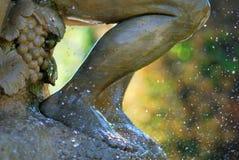 Steinfahrwerkbein in einem Wasser-Spray Lizenzfreie Stockfotos