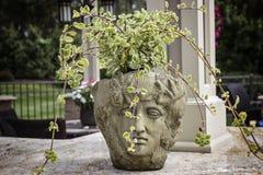 Steinfehlschlag-Pflanzer mit geschnitztem Statuen-Gesicht Lizenzfreies Stockfoto