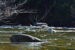 Steinfelsen im Fluss Stockfotos