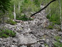 Steinfluß Stockbild