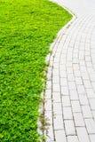Steingehweg durch Rasenfläche Lizenzfreie Stockfotografie