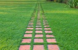 Steingehweg im Garten mit grünem Gras Lizenzfreies Stockfoto