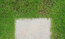 Steingehweg mit grünem Gras Stockbilder