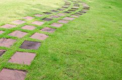 Steingehwegzeile im Garten Stockfotografie