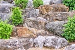Steingruppen mit kleinem Baum, natürlicher Musterhintergrund lizenzfreie stockfotografie