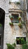 Steinhäuser in der schmalen Straße der alten Stadt, schöne Architektur mit Bogen und Anlagen im Topf, Trogir, Dalmatien, Kroatien stockbilder