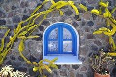 Steinhaus mit einem blauen Fenster und einem dekorativen Kaktus um das Gebäude in Santorini stockfoto