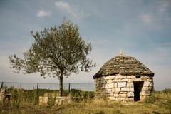 Steinhaus und Olivenbaum Stockbilder