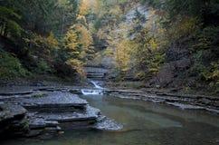Steinige Bach-Schlucht im Herbst Stockfotos