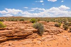 Steinige gelbe Wüste von Arizona Abnutzung des Sandsteins Südwestliche Vereinigte Staaten lizenzfreie stockfotografie