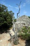 Steinige Hütte im Bories Dorf in Frankreich Stockbild