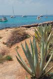 Steinige Küste und Yachten in der Bucht Cala Xinxell Palma de Mallorca, Spanien Lizenzfreie Stockfotos