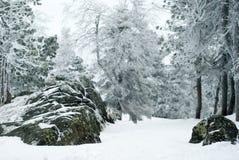 Steinige Nordhochebene mit schneebedeckten Felsen Lizenzfreies Stockfoto