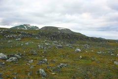 Steinige Steigung Stockbild