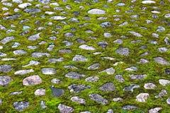 Steinige Straße mit Gras Stockbilder