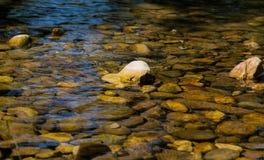 Steinige Unterseite von einem sauberen Gebirgsfluss Lizenzfreie Stockbilder