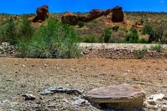 Steinige Wüste auf einem Hintergrund von roten Felsen und von blauem Himmel lizenzfreie stockfotografie