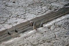 Steinige Zylinder in einem Mondkalender stockfotografie