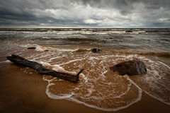Steiniger Strand Stockfotografie