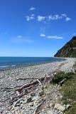 Steiniger Strand, Treibholz, Tasman-Bucht, Glenduan, NZ lizenzfreie stockfotografie