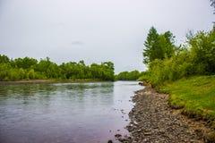 Steinküste von klarem Fluss stockbild