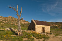 Steinkopf ruin. Derelich farm building in the rugged and rocky terrain in the Namaqualand semi-arid region of South Africa Stock Image